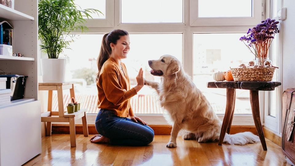 Un femme touche la patte de son chien avec sa main.