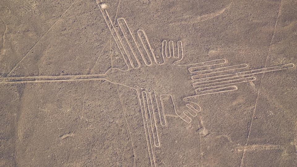 Un géoglyphe en forme de colibri vu du ciel.