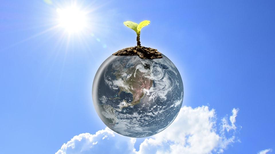 Une planète avec un pousse de plante sur le dessus.