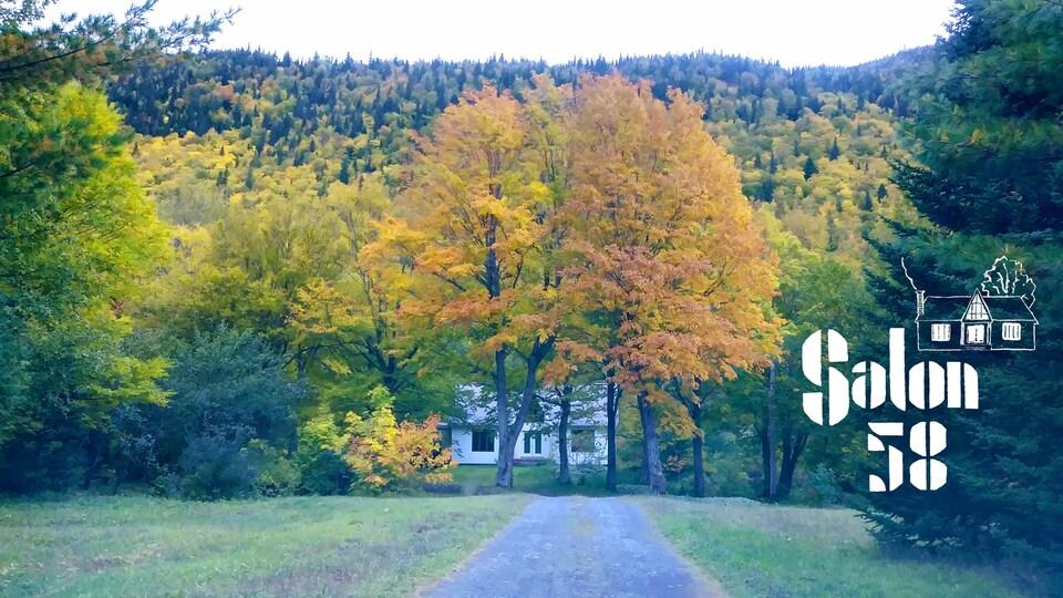 Une maison dissimulé derrière des arbres