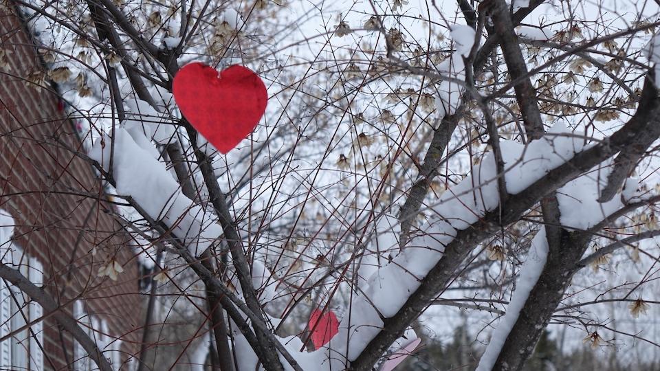 Un coeur rouge en carton est accroché à la branche d'un arbre enneigé.