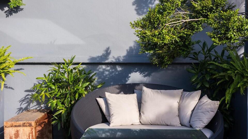 Un sofa et des tables d'extérieur sont entourés de plantes.