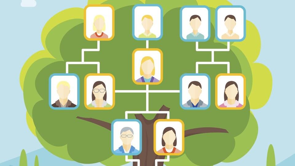 Un dessin en couleur montre l'arbre généalogique d'une famille.