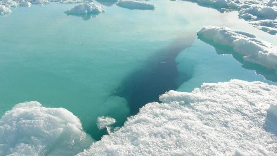 Des photos d'icebergs prises par Ève Christian.