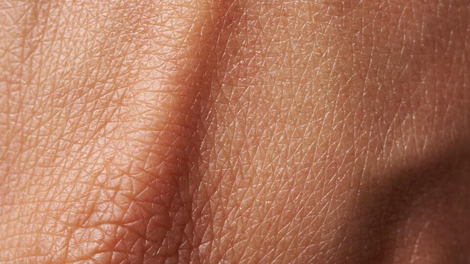 Gros plan sur de la peau humaine