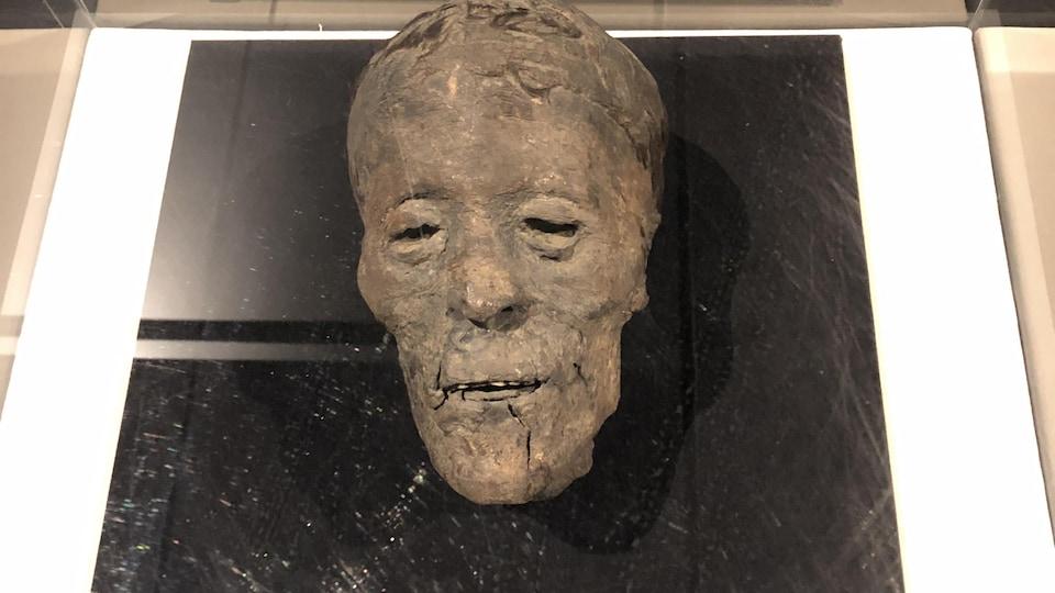 Une tête humain momifiée.