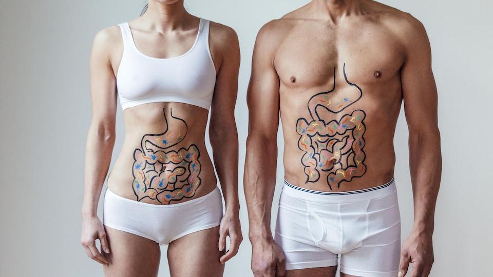 Une femme et un homme avec une illustration sur leur abdomen d'intestins avec des bactéries colorées.
