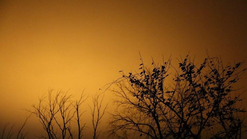 Ciel de nuit éclairé par lumière.