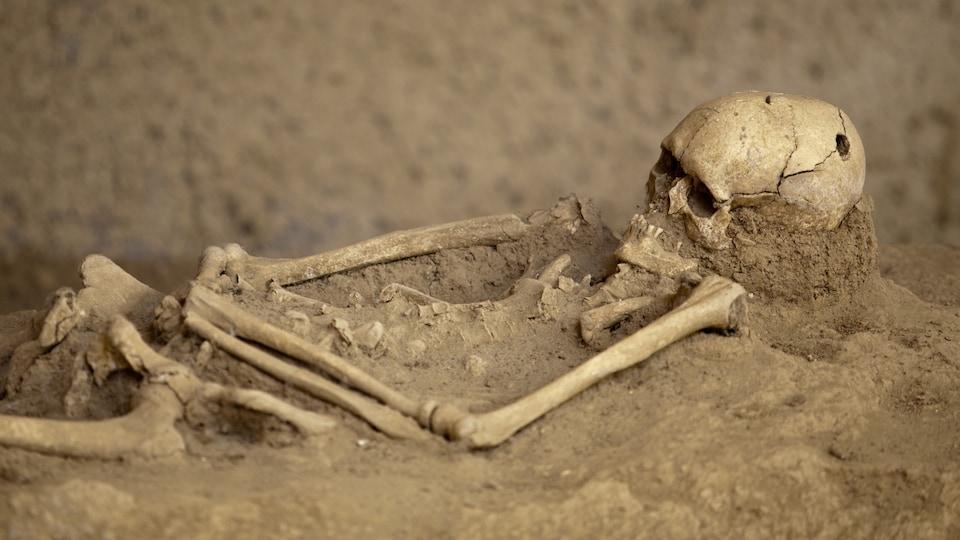 Sur un terrain sablonneux, un squelette humain sort de la terre. On voit le crâne et les bras et une partie des os des jambes.