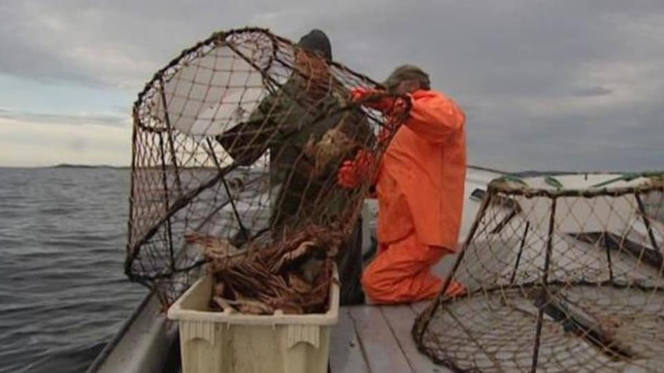 La pêche du crabe des neiges