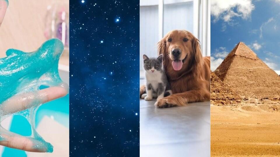 Montage de quatre photos : de la glu faite maison, un ciel étoilé, un chat et un chien et les pyramides d'Égypte.