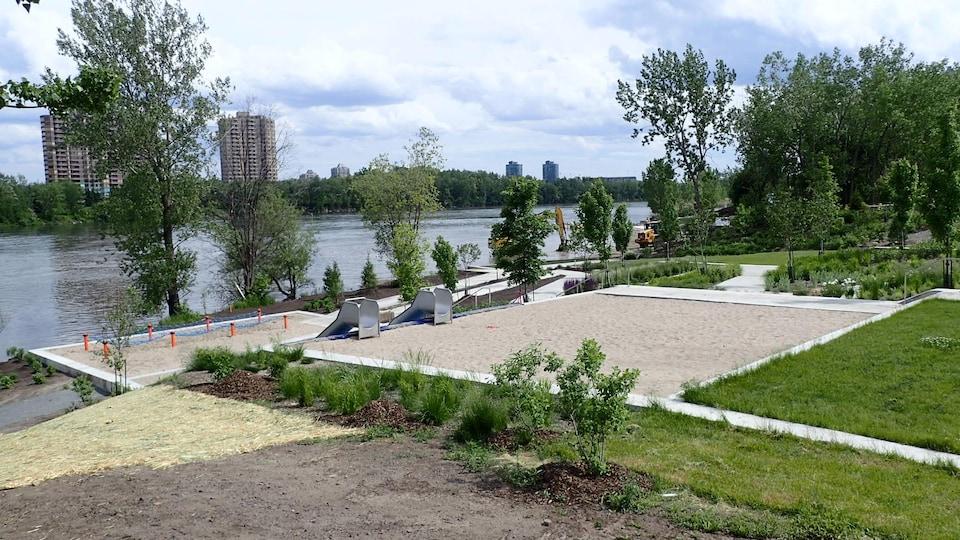 Des arbres et du sable au bord du fleuve.