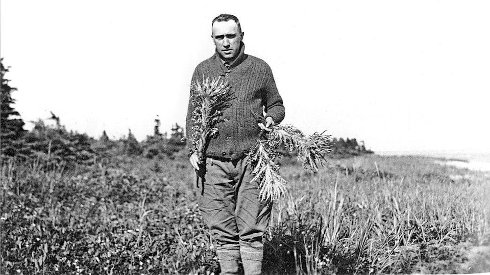 Conrad Kirouac (frère Marie-Victorin) en 1928 à la grande île à la vache marine, dans le golfe du Saint-Laurent, tenant un chardon de Mingan (cirsium minganense), une espèce de chardon qu'il avait identifiée en 1924.