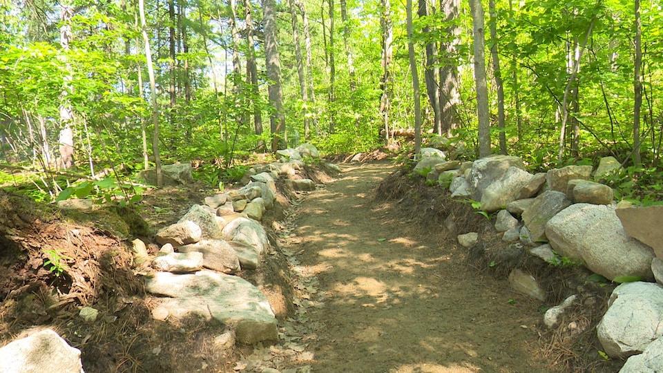 Un sentier pédestre dans un parc national.