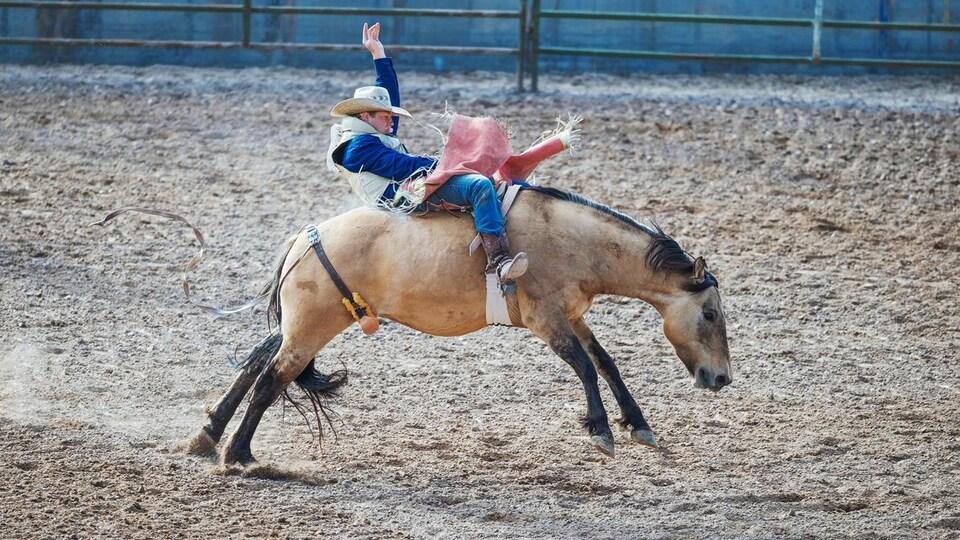 Un cow-boy se maintient sur un cheval dans une arène.