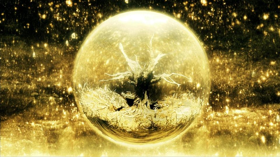 Un arbre est dans une sphère lumineuse.