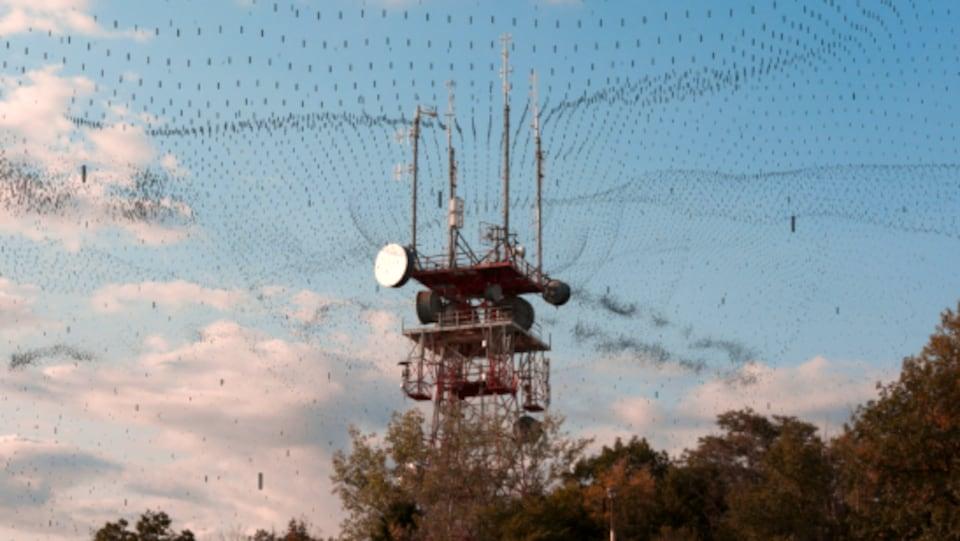 Image tirée du film «Prison sans barreaux», qui aborde l'hypersensibilité environnementale.