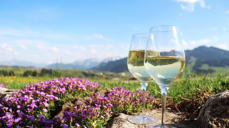 Deux verres de vin sont posés sur une pierre.