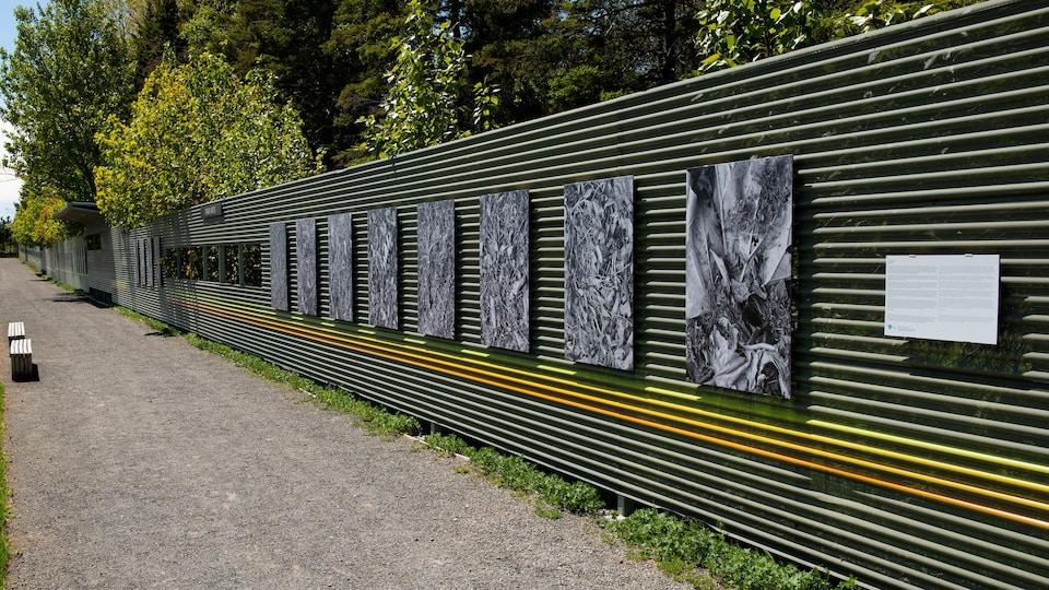 Exposition ''Antifloral'' au Jardins de Métis