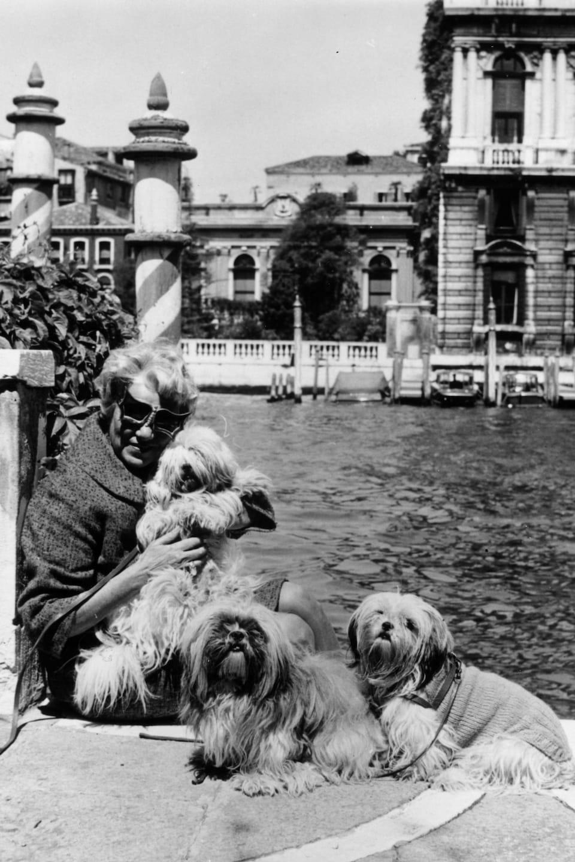 Peggy Guggenheim avec ses chiens sur le bord du Grand Canal de Venise en 1964.