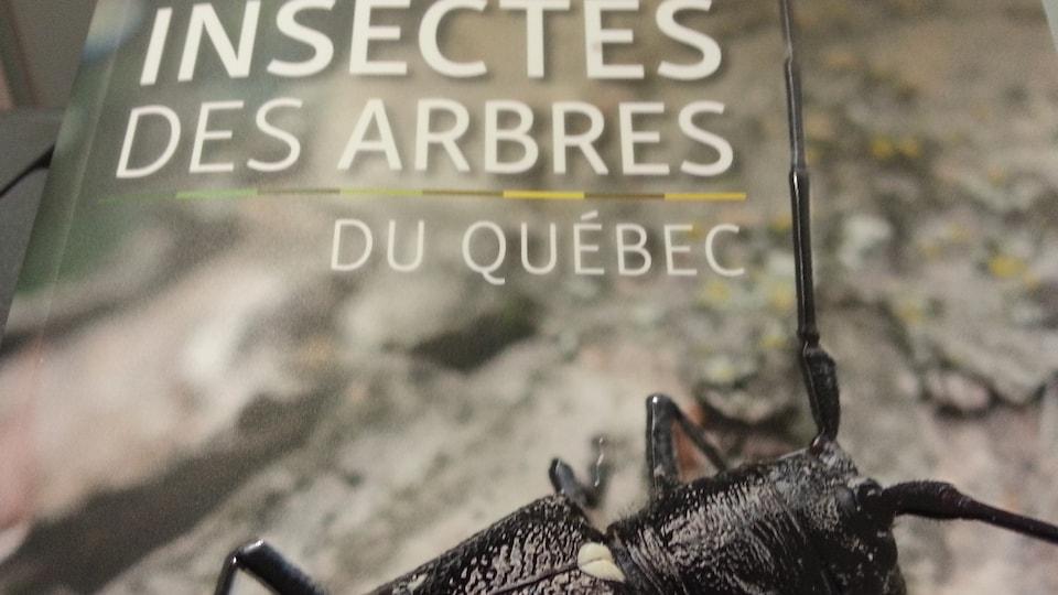 Livre des Insectes des Arbres du Québec