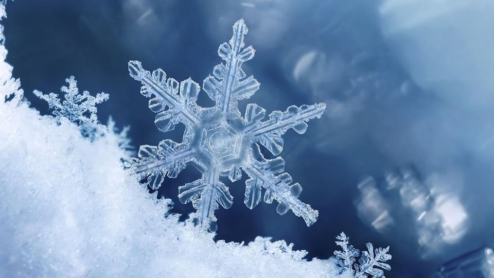 Des cristaux de neige
