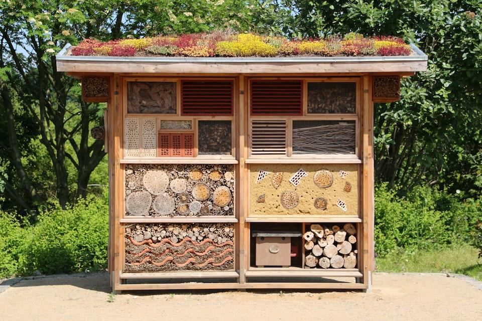 Une structure est compartimentée, de sorte à créer un hôtel à insectes pour préserver la biodiversité. Les compartiments de grandeurs différentes sont remplis de différentes matières : paille, pommes de pins, brindilles, branches d'arbres, brique, pot en terre cuite et feuilles mortes.