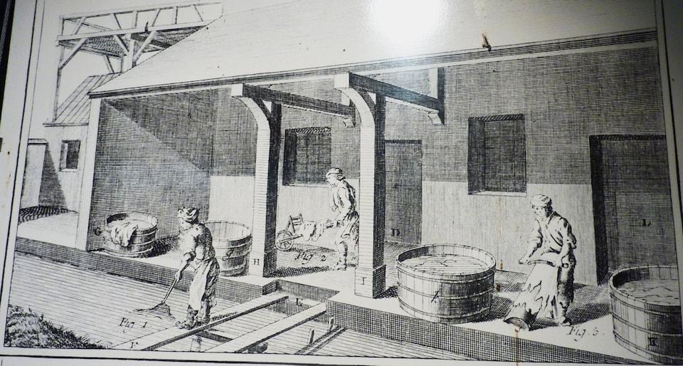 Planche de l'Encyclopédie de Diderot et d'Alembert illustrant une tannerie (1772)