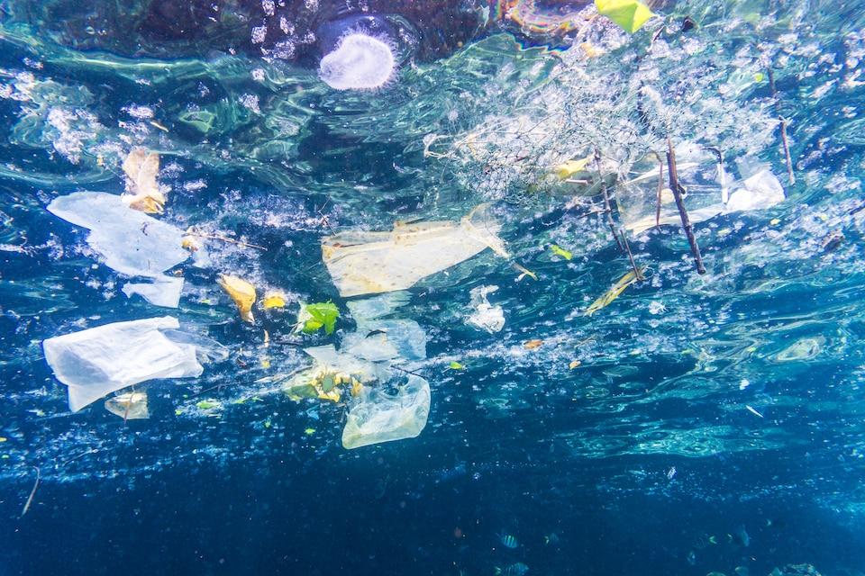 Des morceaux de plastique flottent dans un océan.