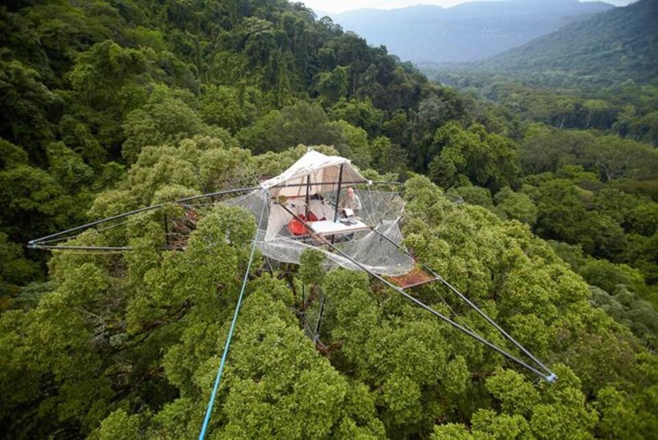 Le Radeau des cimes surplombe une forêt laotienne.