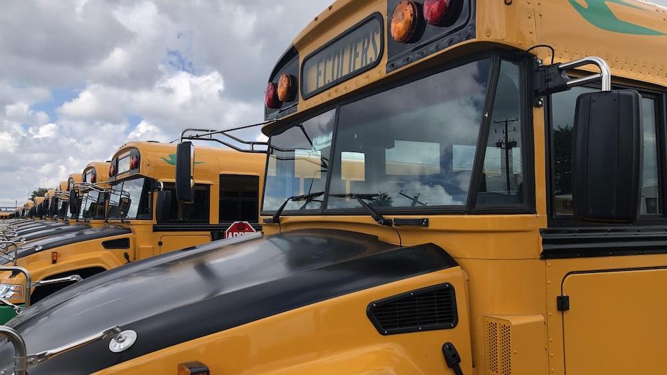 Une rangée d'autobus électriques.