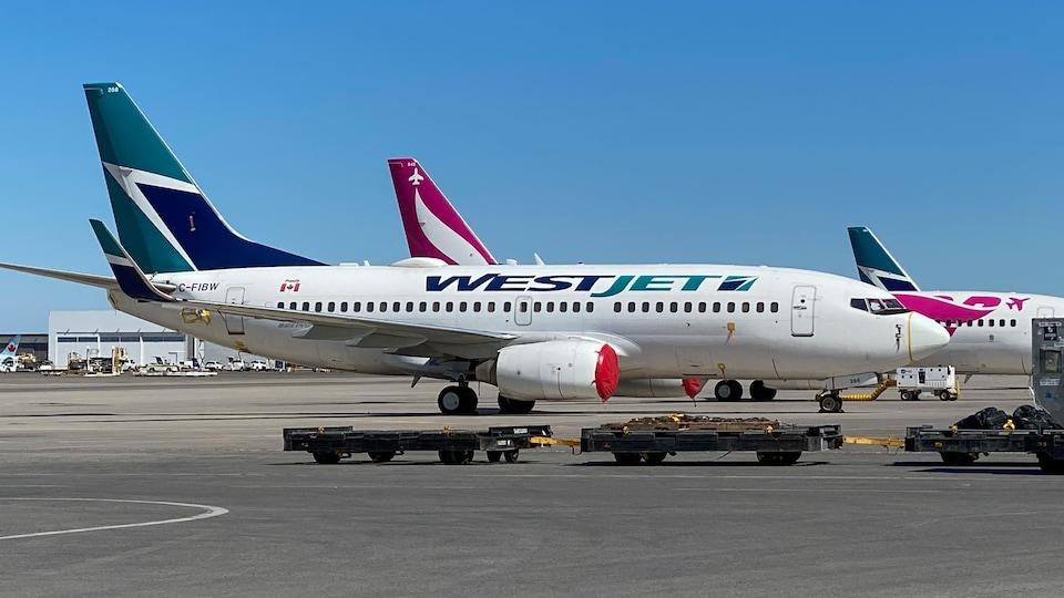 Un avion de la compagnie WestJet sur le tarmac de l'aéroport Pearson de Toronto.