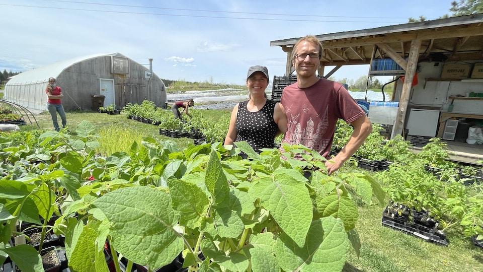 Le couple de propriétaires de La Boîte à Légumes posent devant leur serre.