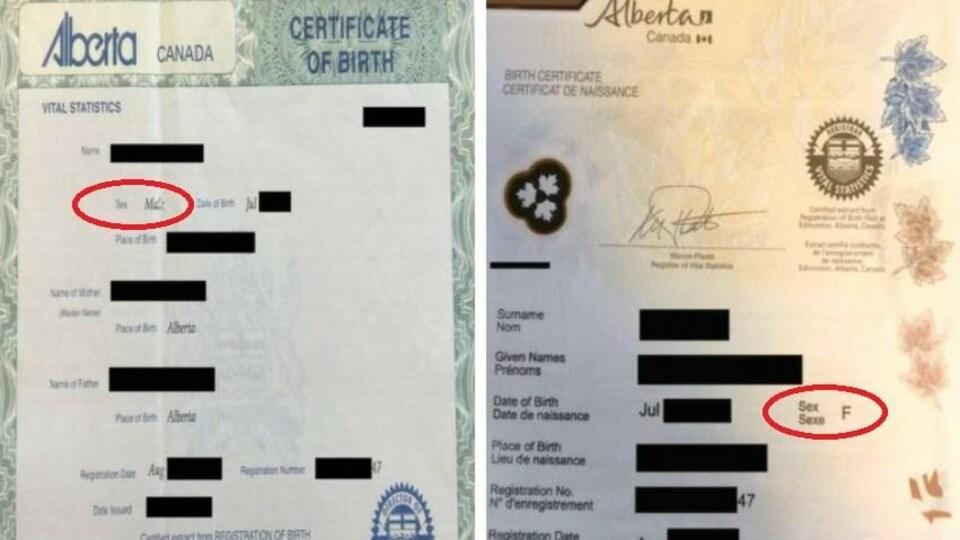 Deux certificats de naissance côte à côte. Le sexe est entouré par un cercle rouge. Sur le premier il est écrit masculin et sur l'autre F pour féminin.