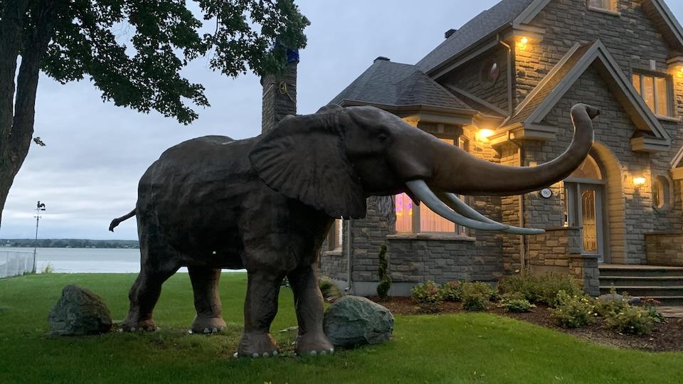 L'éléphant grandeur nature est situé à côté de la résidence de ses propriétaires, Jacinthe Laquerre et Normand Provencher, de Nicolet.