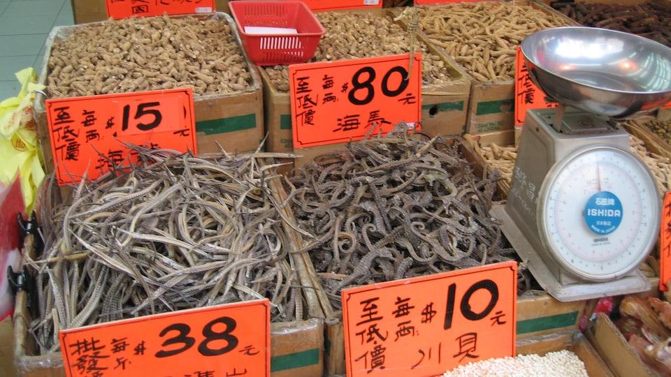 Des étalages d'une pharmacie chinoise avec des hippocampes séchés.