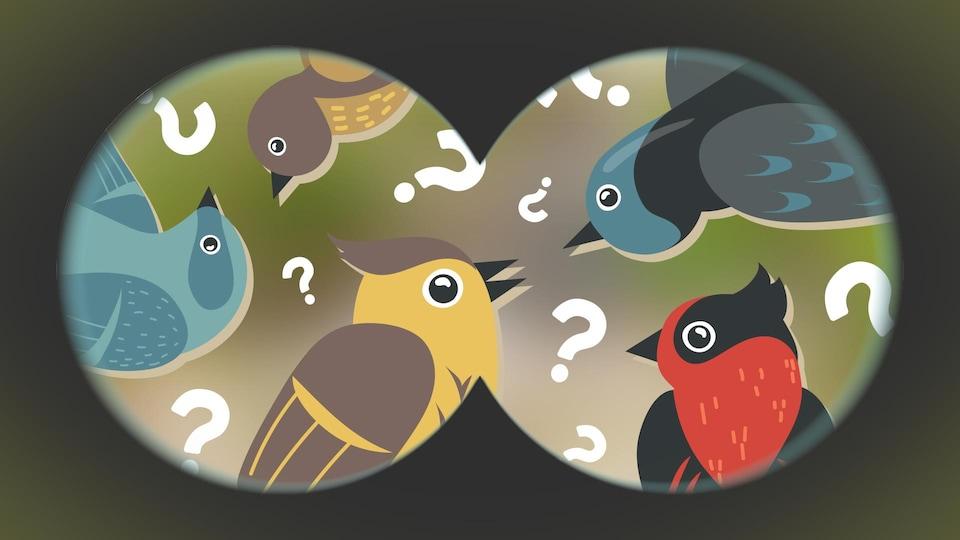 Illustration de plusieurs oiseaux vus à travers des jumelles.