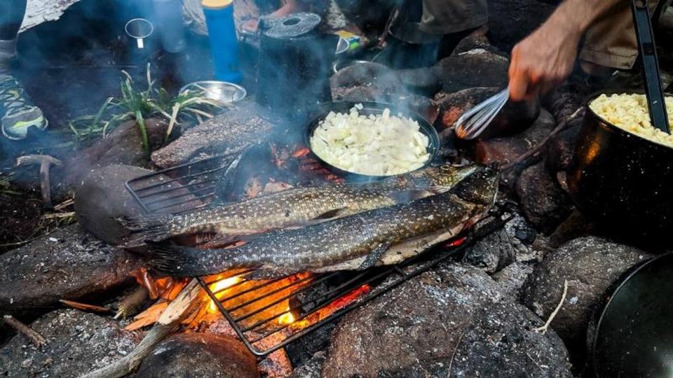 Un repas est préparé sur un feu de bois en camping.