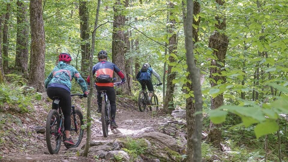 Des amateurs de vélo de montagne