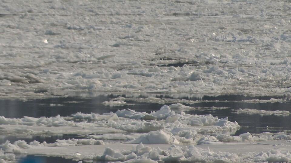 Des glaces sur le fleuve Saint-Laurent.
