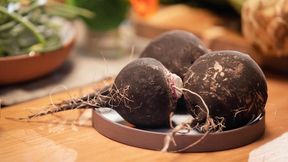 Des radis noirs lavés sont posés sur une assiette ronde prêts à être apprêtés.