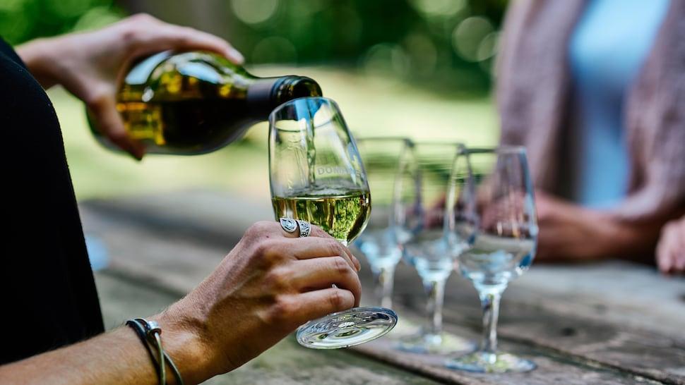 Une personne verse du vin dans un verre de dégustation.