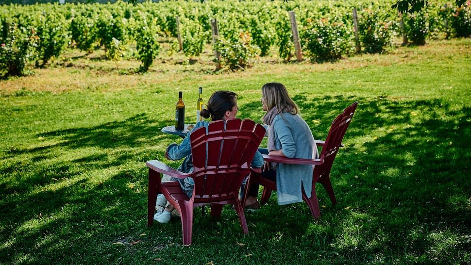 Deux personnes sont assises dans des chaises de jardin face à des allées de vignes.