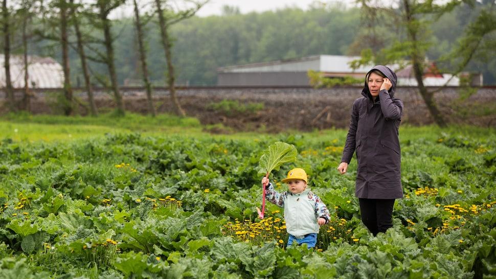 Femme et bambin qui marchent dans un champ.