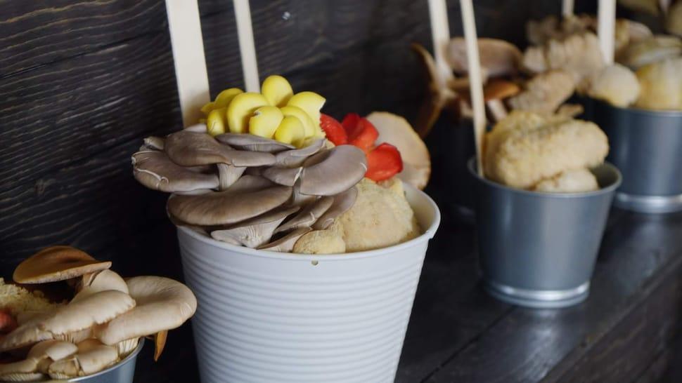 Des champignons colorés sur un étal.