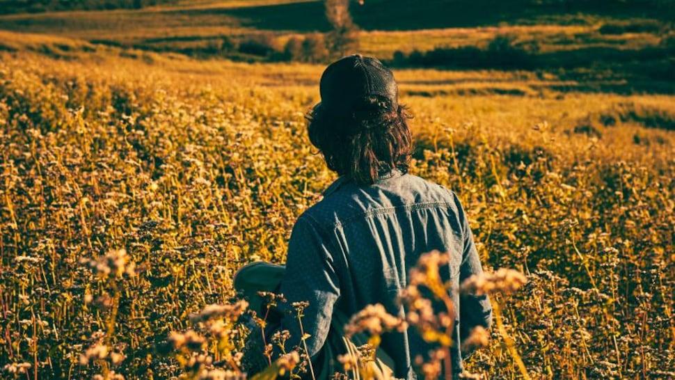 Un apiculteur de dos dans un champ.