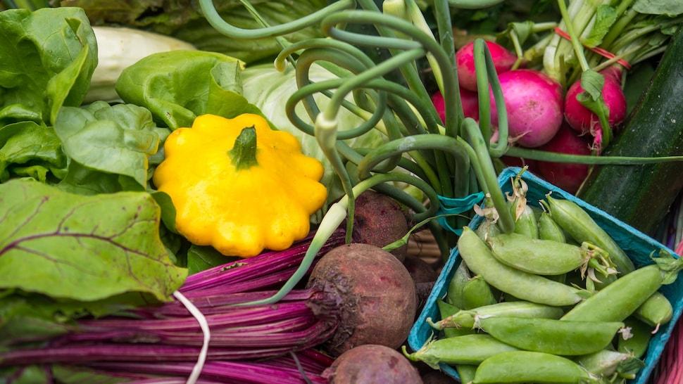 Panier de légumes biologiques du Québec.