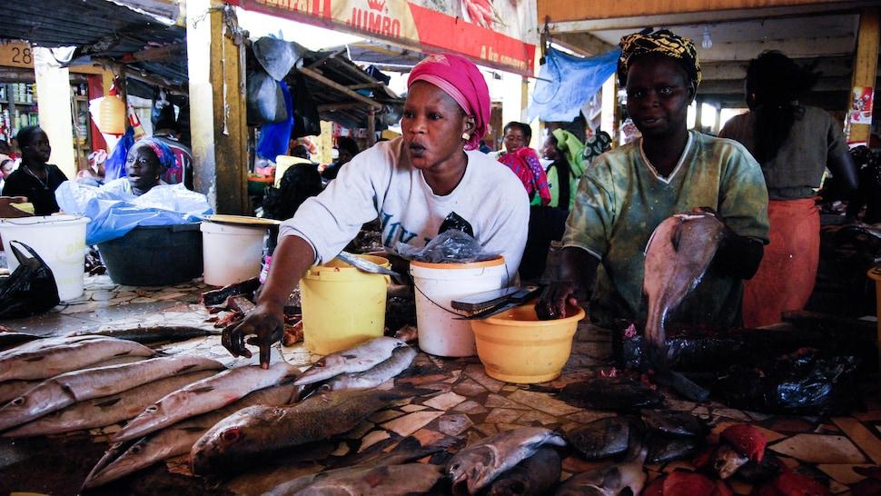 Femmes vendant du poisson dans un marché sénégalais.