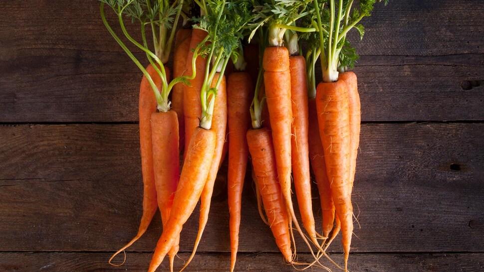 Une botte de carottes fraîches avec leurs feuilles.