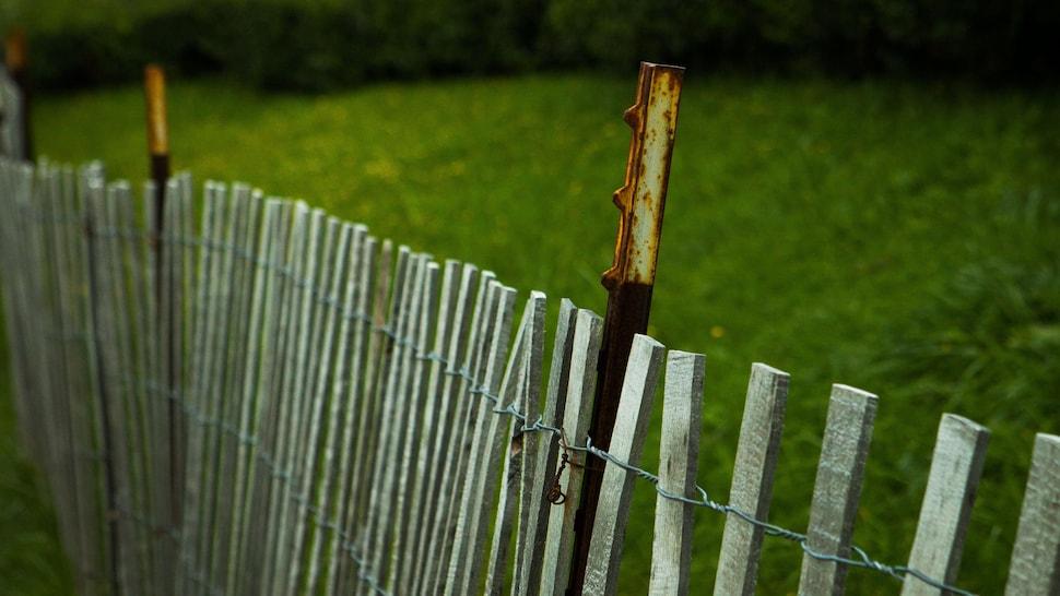 Une clôture de bois longe une haie.